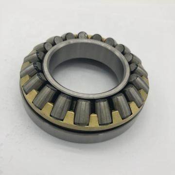 INA GS89310  Thrust Roller Bearing