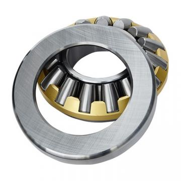 INA GS89330  Thrust Roller Bearing