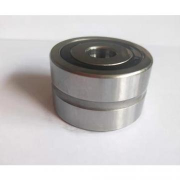 Insert Ball Bearing 203-XL-KRR 203 XL KRR